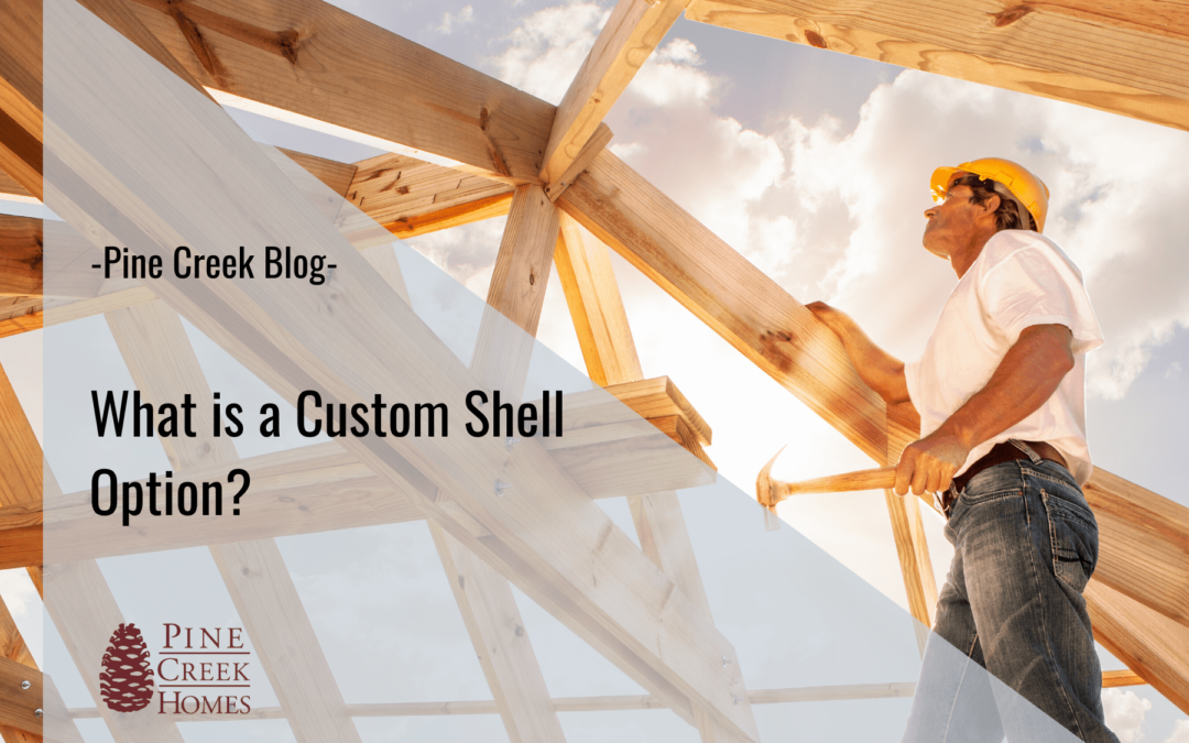 What's a Custom Shell Option?